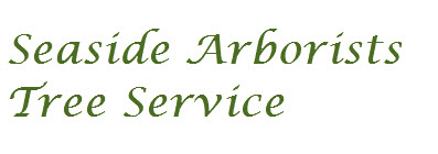 Seaside Arborists Tree Service